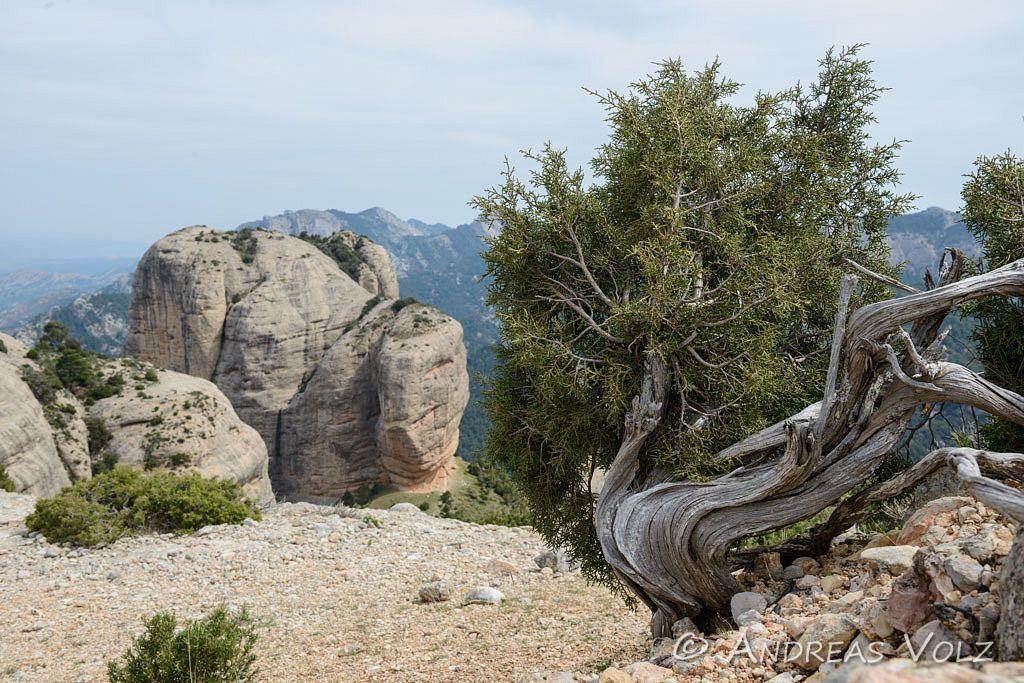 Landschaft843.jpg