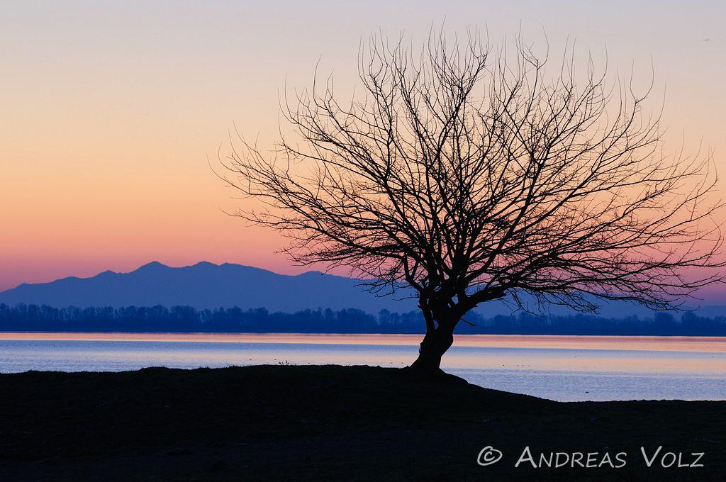 Landschaft446.jpg