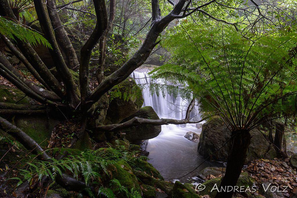 Landschaft647.jpg