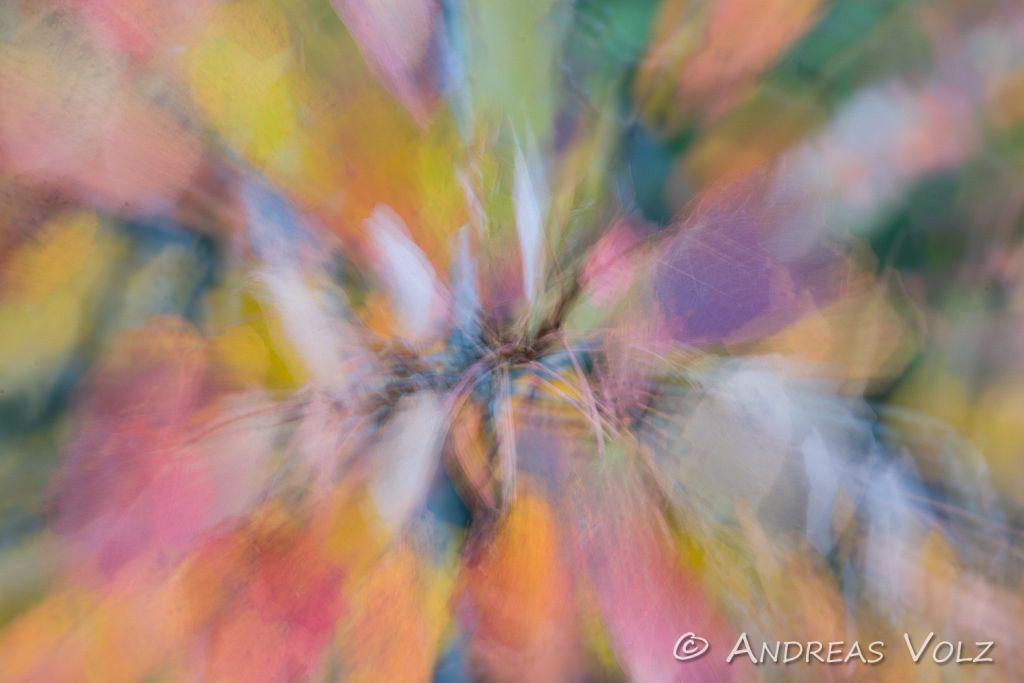 Abstrakt1.jpg