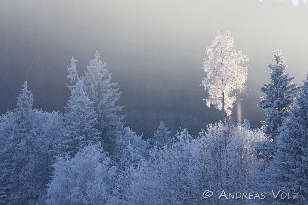 Landschaft75.jpg