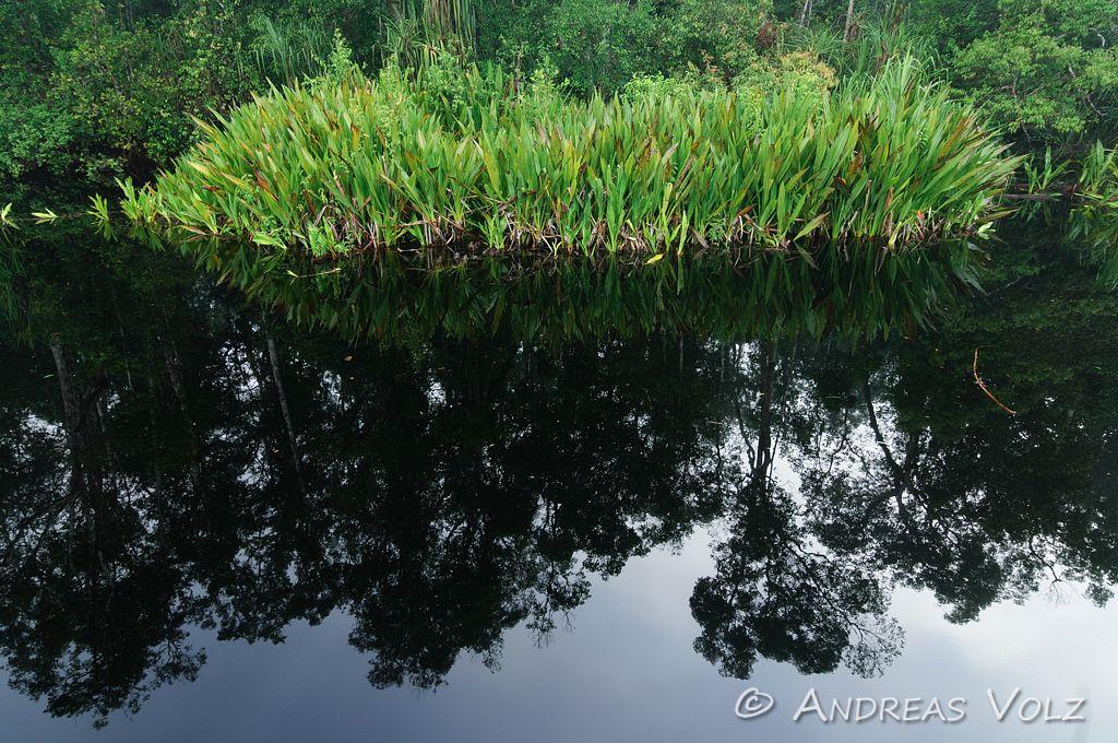 Landschaft301.jpg