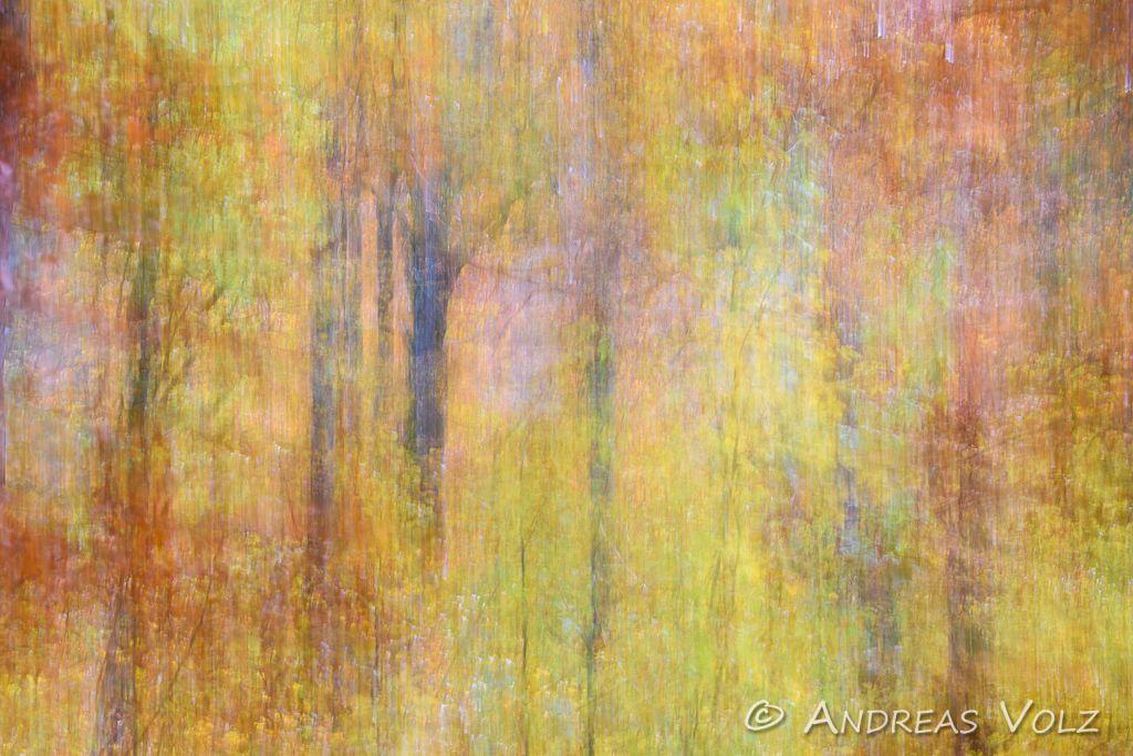 Abstrakt84.jpg