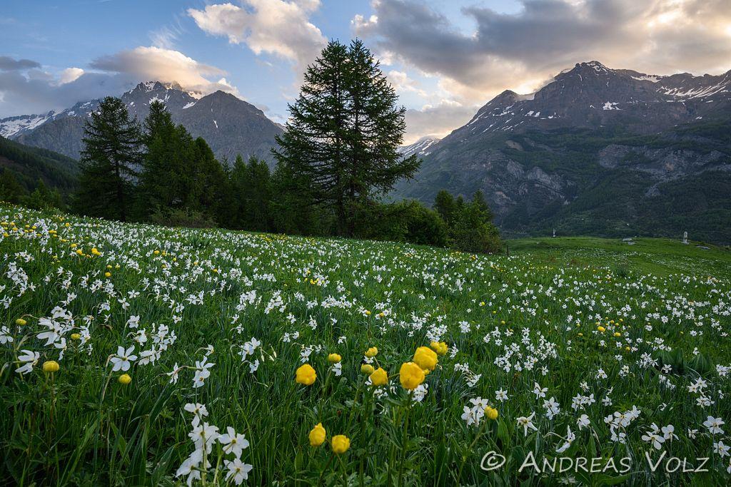 Landschaft1466.jpg