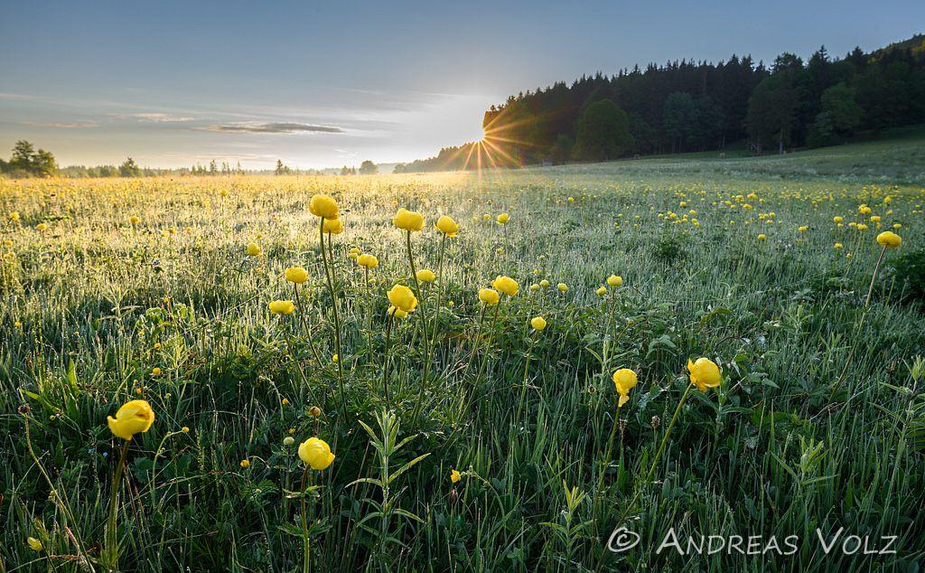 Landschaft1426.jpg