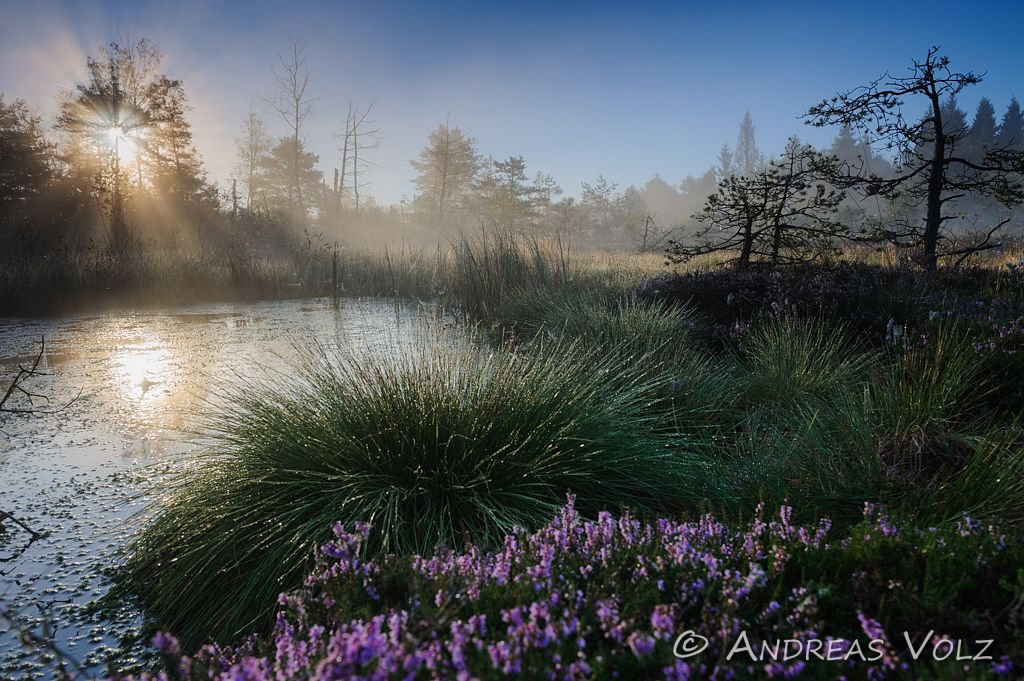 Landschaft406.jpg