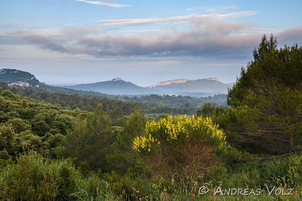 Landschaft1433.jpg