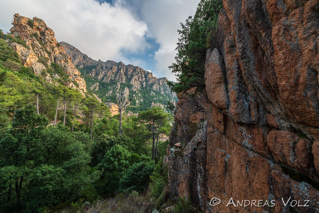 Landschaft1499.jpg